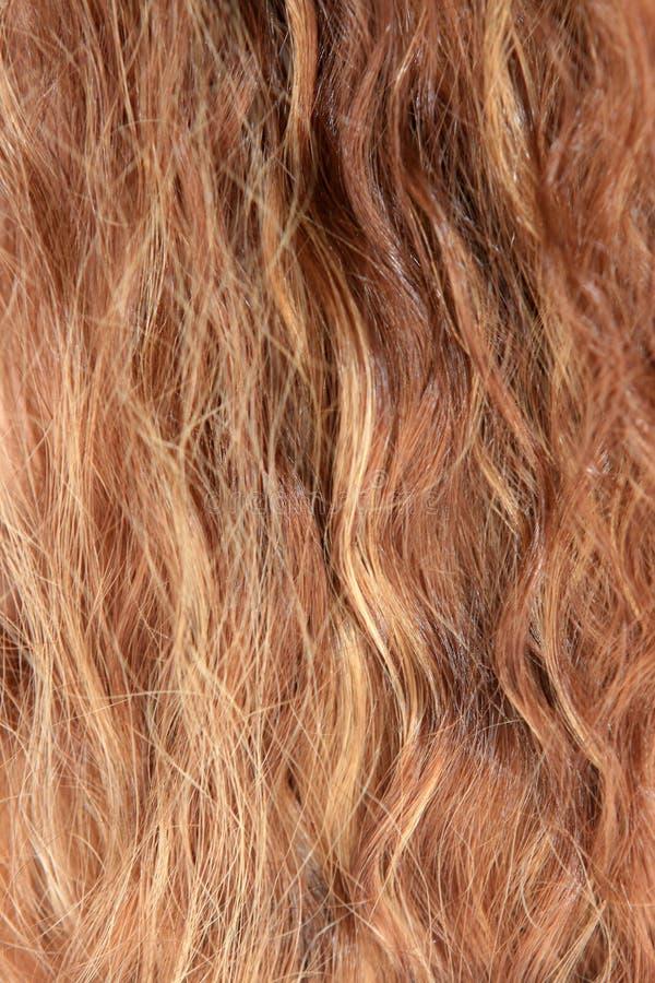Kobieta włosy zdjęcie royalty free