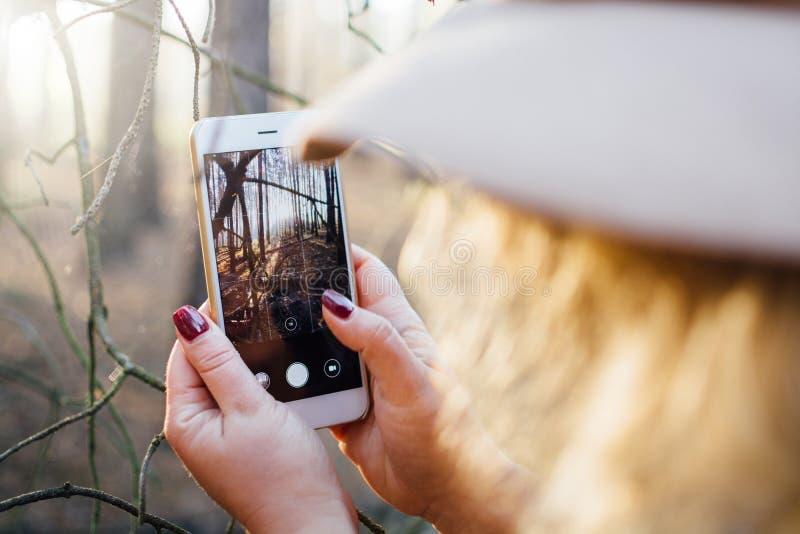 Kobieta w być wypełnionym czymś odczuwanym kapeluszu bierze obrazek mgłowy las z telefonem komórkowym Zbliżenie, rozmyty przedpol zdjęcie stock