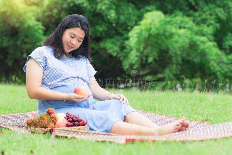 Kobieta w ciąży mienia jabłczana owoc w ogródzie obraz stock