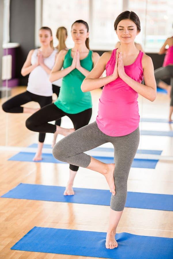 Kobieta w ciąży przy gym obrazy royalty free