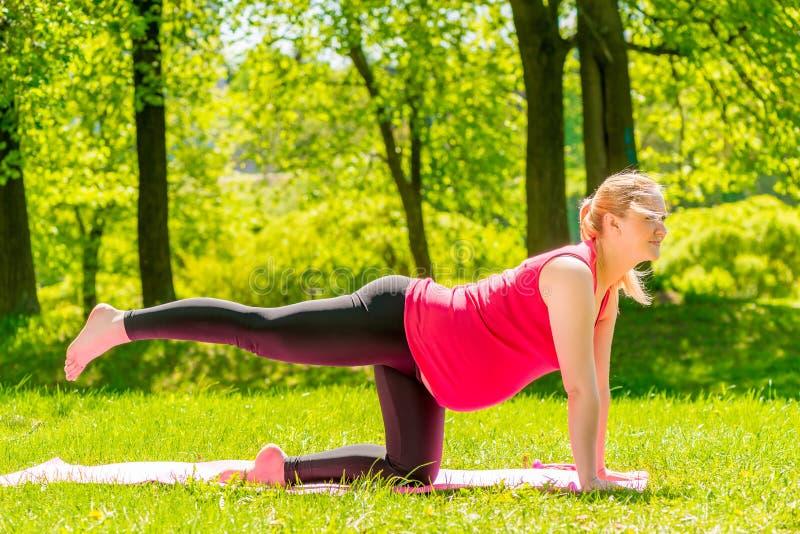 Kobieta w ciąży robi ćwiczeniom na ciała rozciąganiu fotografia royalty free