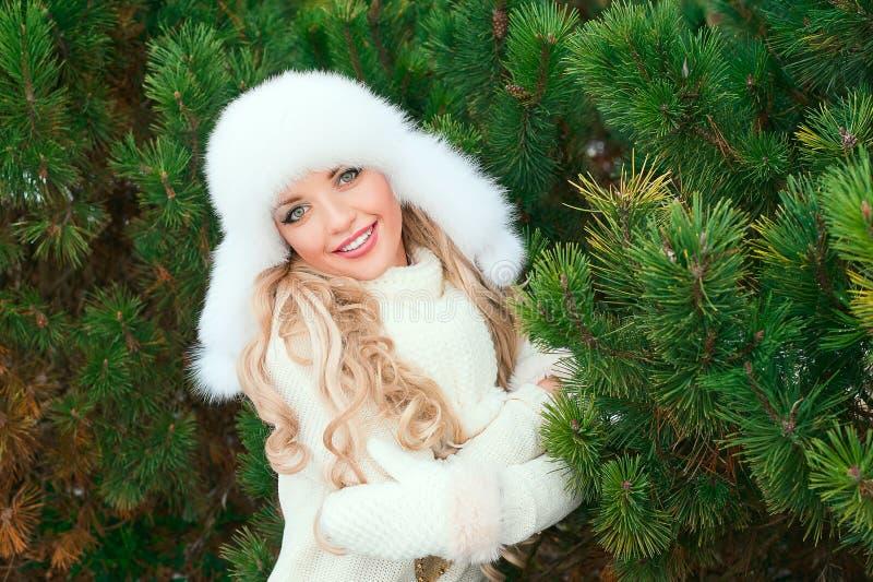 Kobieta w kapeluszu, mitynki, scarves, pulowery, futerko w zimy jodły lesie zdjęcia stock