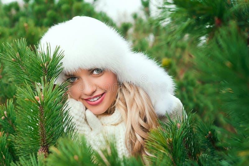 Kobieta w kapeluszu, mitynki, scarves, pulowery, futerko w zimy jodły lesie obrazy stock