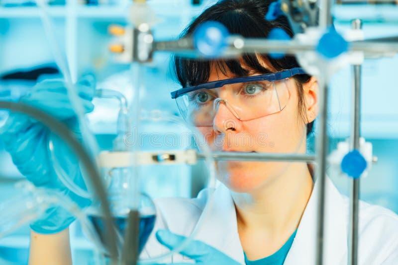 Kobieta w mikrobiologii laboratorium zdjęcie stock