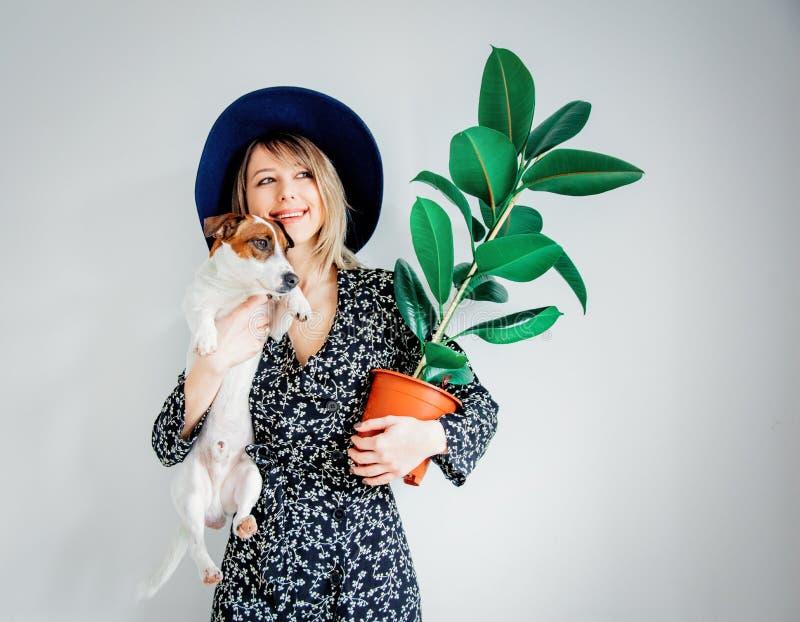 Kobieta w modnej sukni z rośliną w psie i garnku obrazy stock