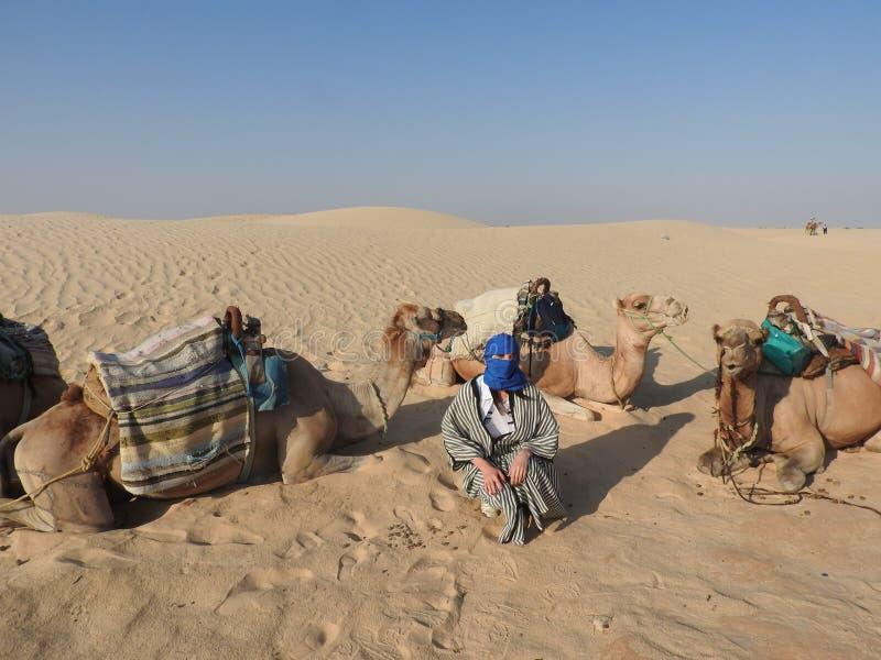 Kobieta w turbanie twarz zamyka, z wielbłądem w saharze zdjęcia stock