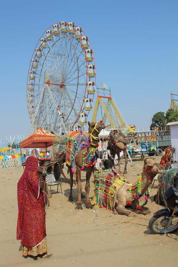 Kobieta wielbłądy i ferris koła przy Pushkar wielbłąda jarmarkiem obrazy stock