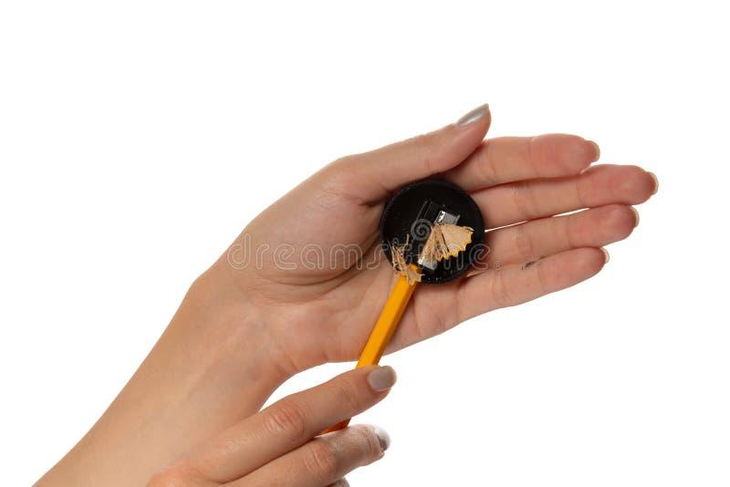 Kobieta wręcza które ostrzą żółtego ołówek z czarną ostrzarką na białym tle Mi?dzynarodowy ucznia ` dzie? obraz royalty free