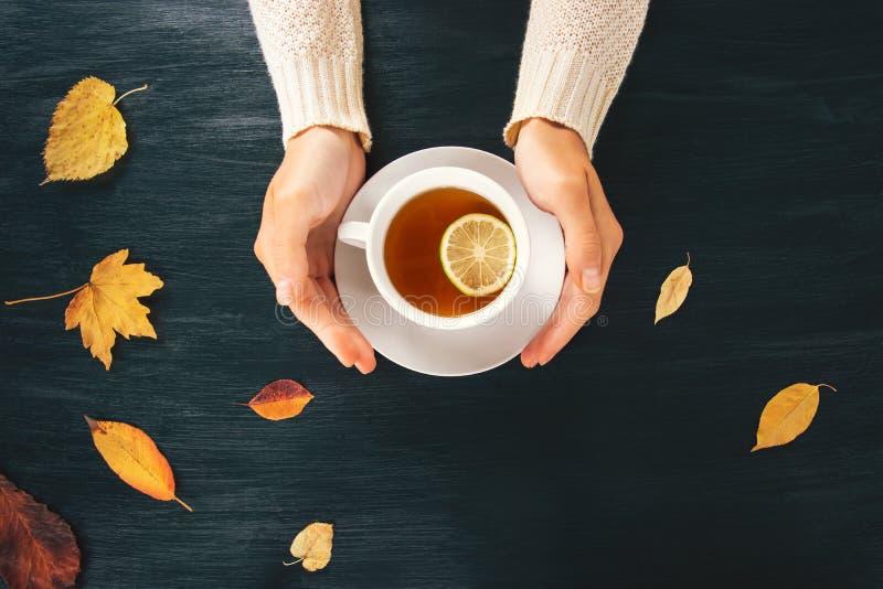 Kobieta wręcza trzymać gorącą herbacianą cytryny filiżankę obrazy royalty free
