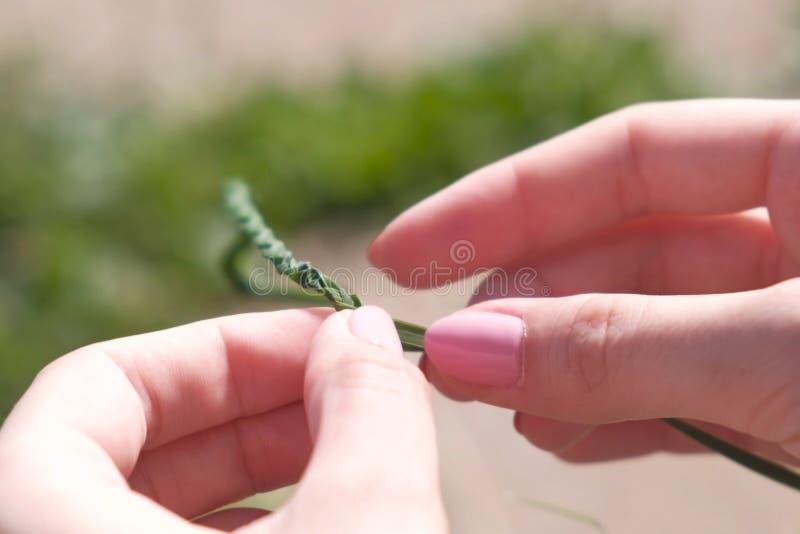 Kobieta wyplata warkocz od liści, zakończenie widok fotografia royalty free