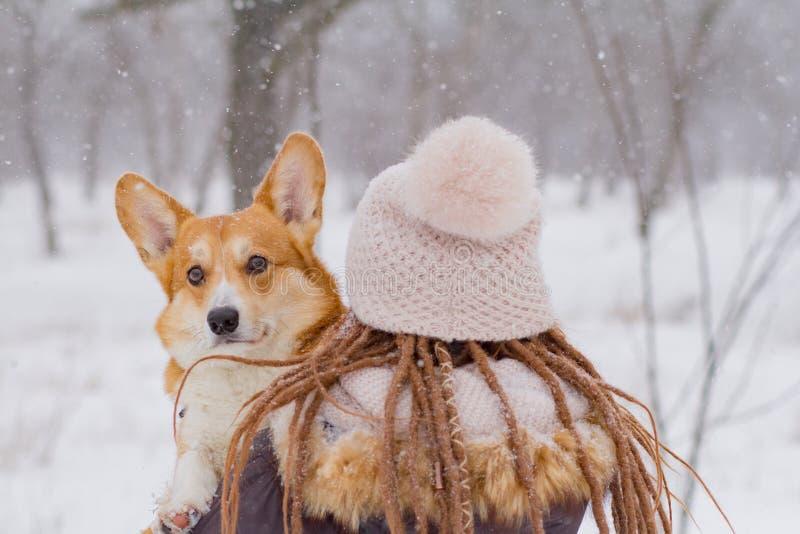 Kobieta z ślicznym corgi psem fotografia royalty free