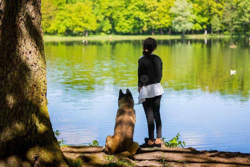 Kobieta z Amerykańskim Akita psem fotografia stock