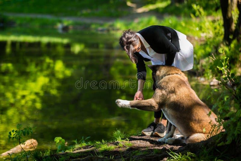 Kobieta z Amerykańskim Akita psem zdjęcie royalty free
