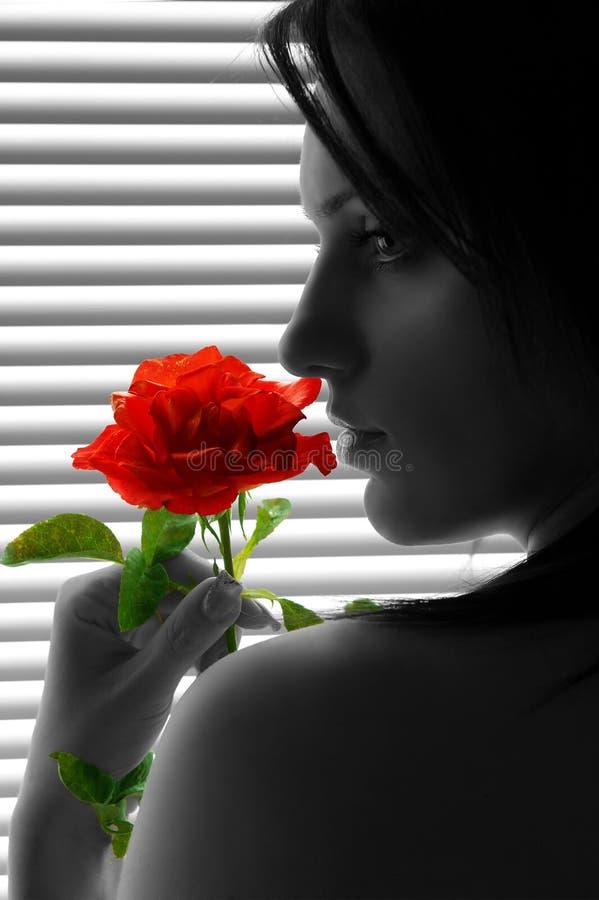 Kobieta z czerwienią wzrastał zdjęcia stock