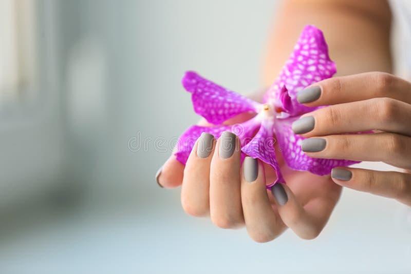 Kobieta z eleganckim pięknym manicure'u mienia kwiatem, zbliżenie zdjęcie stock