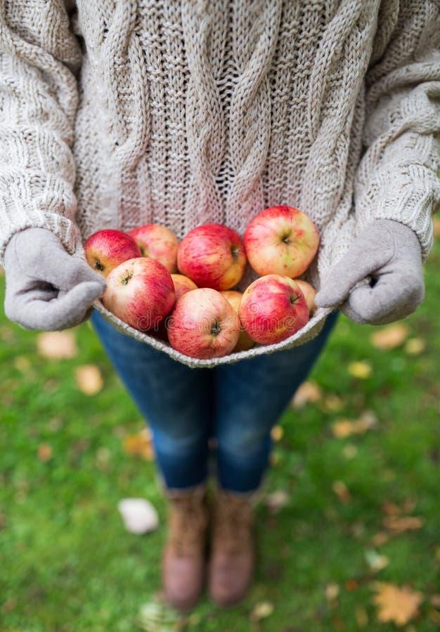 Kobieta z jabłkami przy jesień ogródem fotografia stock