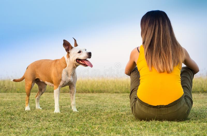 Kobieta z jej psim obsiadaniem na wymiany czułości i trawie obraz royalty free