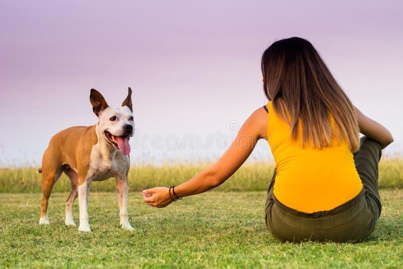 Kobieta z jej psim obsiadaniem na wymiany czułości i trawie obraz stock