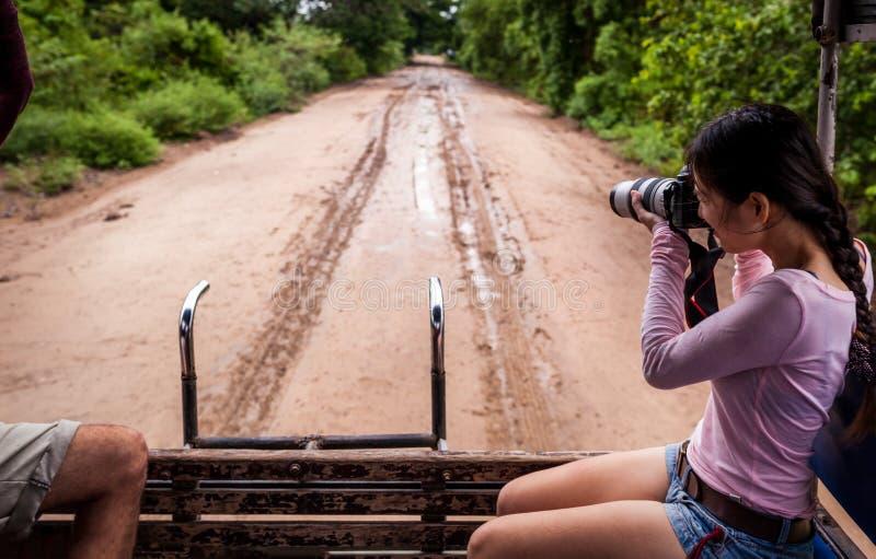 Kobieta z kamerą na safari, Pantanal, Brazylia fotografia stock