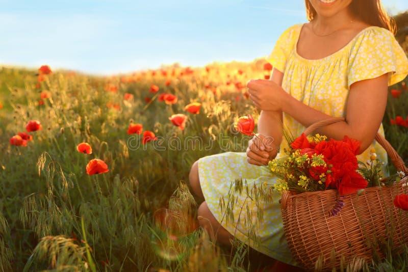Kobieta z koszem wildflowers w nasłonecznionym maczka polu, zbliżenie zdjęcia stock