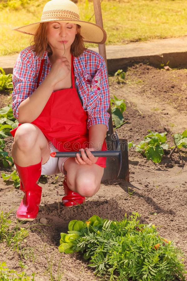 Kobieta z ogrodnictwa narzędziem pracuje w ogródzie zdjęcie royalty free