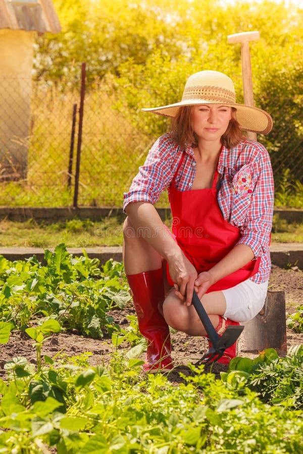 Kobieta z ogrodnictwa narz?dziem pracuje w ogr?dzie obraz stock