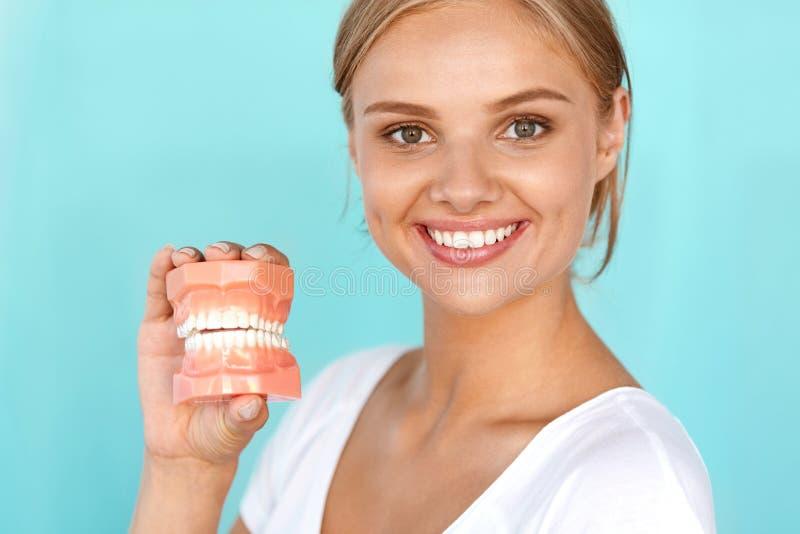 Kobieta Z Pięknym uśmiechem, Zdrowi zęby Trzyma Stomatologicznego modela zdjęcia royalty free
