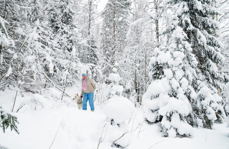 Kobieta z psem na spacerze w zimy drewnie obraz royalty free