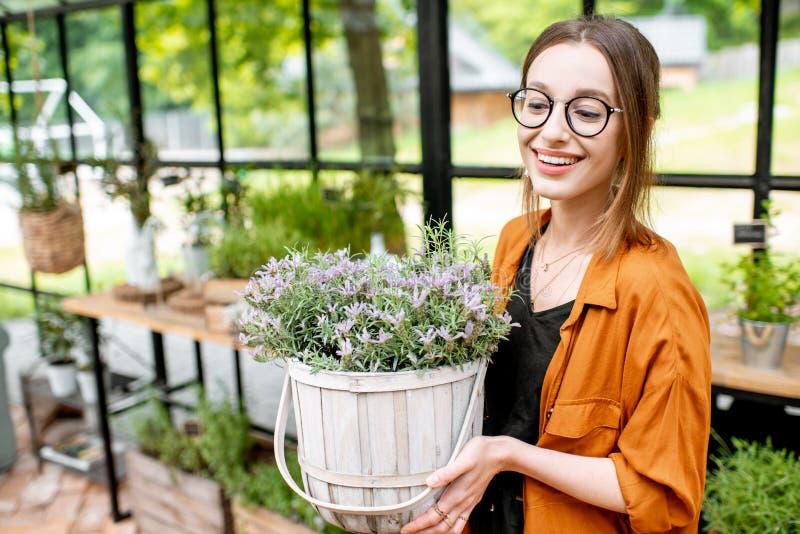 Kobieta z ziele i kwiatami w szklarni zdjęcie stock