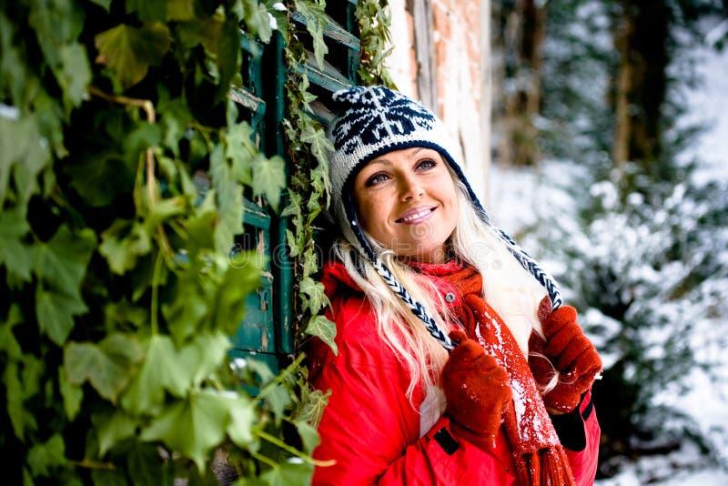 Download Kobieta zima portret obraz stock. Obraz złożonej z osoba - 13334117