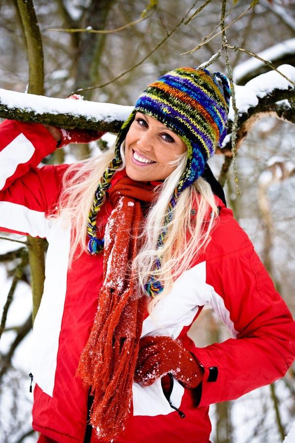 Download Kobieta zima portret obraz stock. Obraz złożonej z dorosły - 13334311