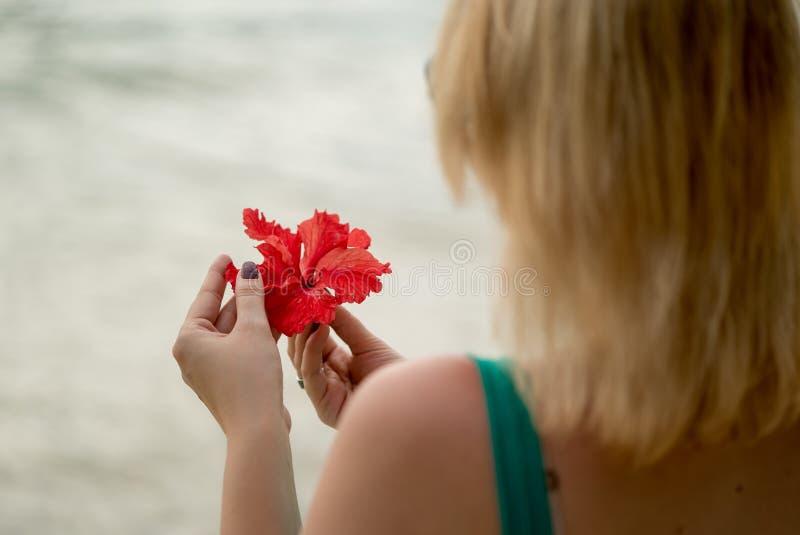 Kobieta zostaje na plaży z czerwonym kwiatem zdjęcie royalty free