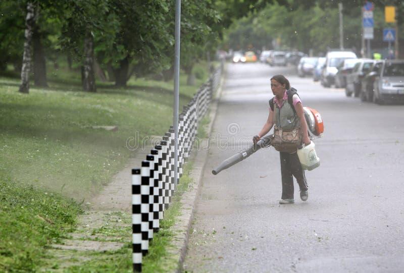 Kobiety cleaning parka footpath zdjęcia royalty free
