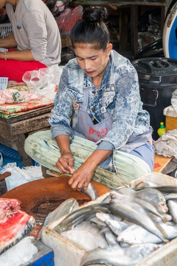 Kobiety cleaning ryba fotografia stock