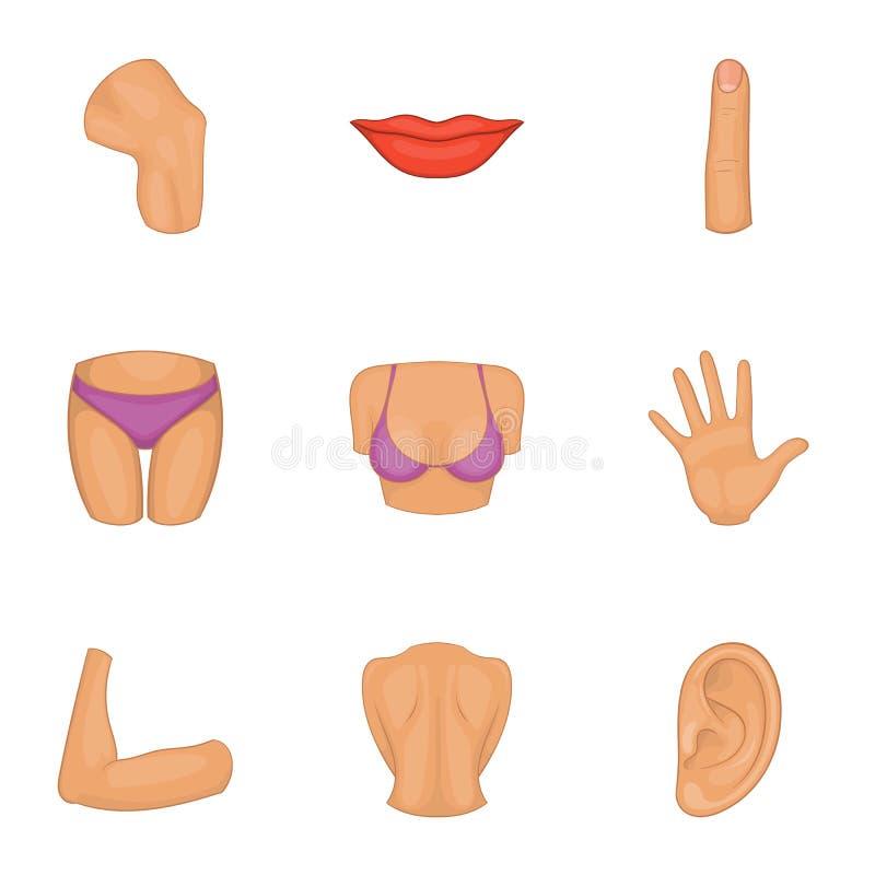 Kobiety części ciała ikony ustawiać, kreskówka styl ilustracji