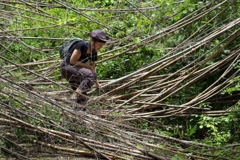 Kobiety dżungla trekking zdjęcia stock