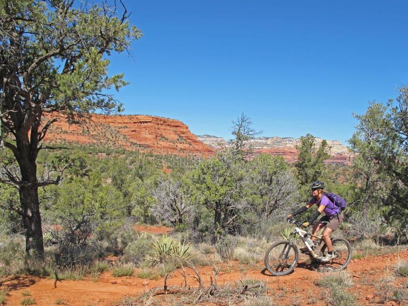 Kobiety halny jechać na rowerze w czerwonych skałach, Sedona, usa obrazy stock