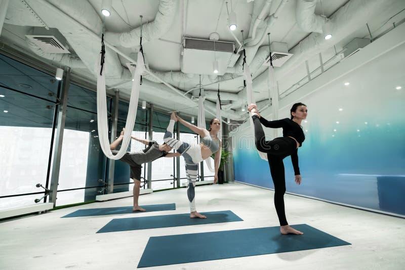 Kobiety i mężczyźni stoi na jeden nogi wykończeniowym joga z rozciąganiem fotografia royalty free