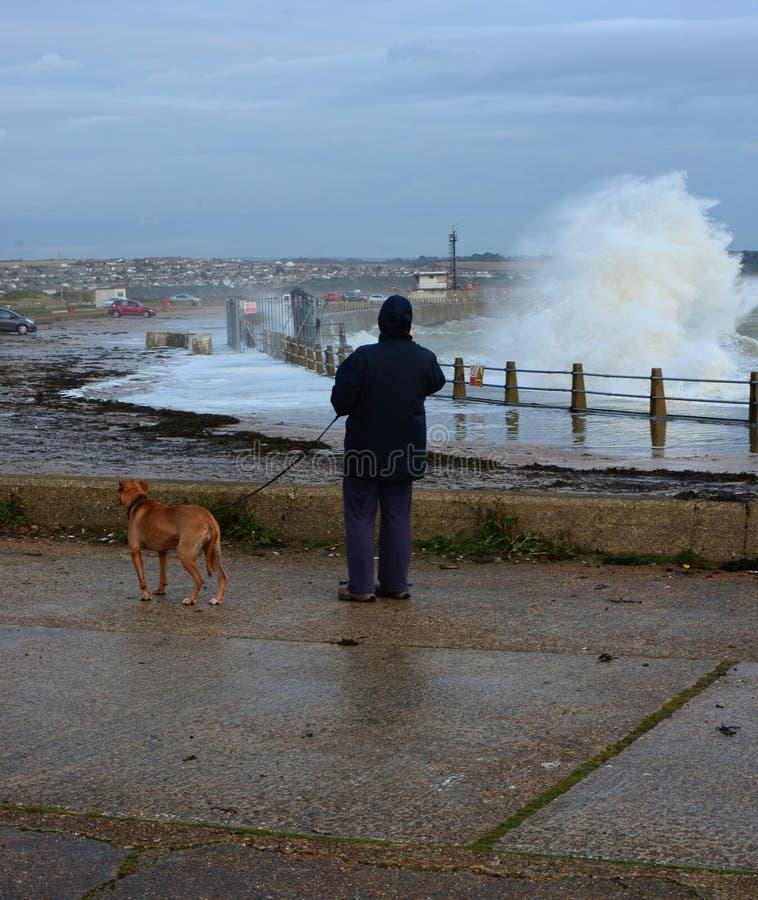Kobiety i psa dopatrywanie rozbija fala zimy burza zdjęcia stock