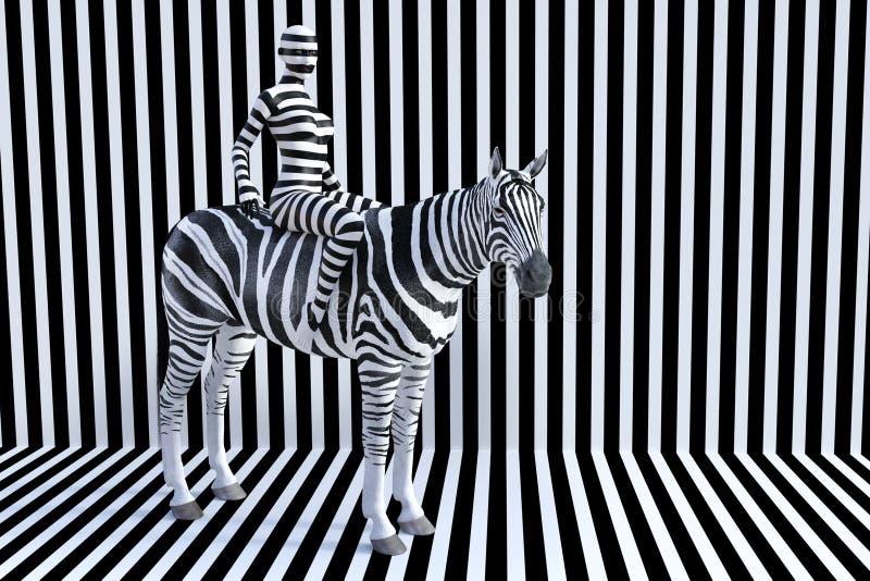 Kobiety Jeździecka zebra, lampasy, przyrody zwierzę royalty ilustracja