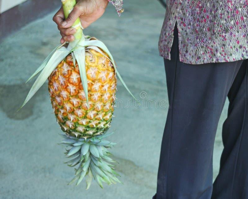Kobiety mienia ananas fotografia royalty free