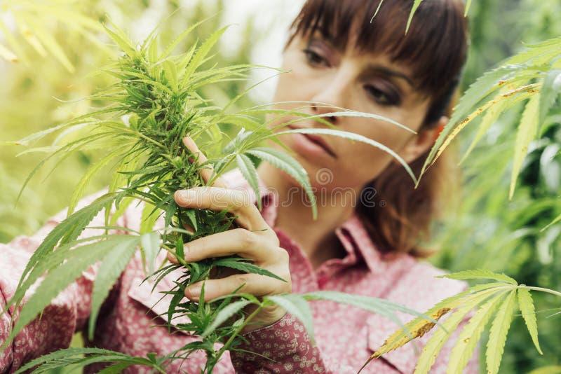 Kobiety mienia konopie kwiaty obrazy royalty free