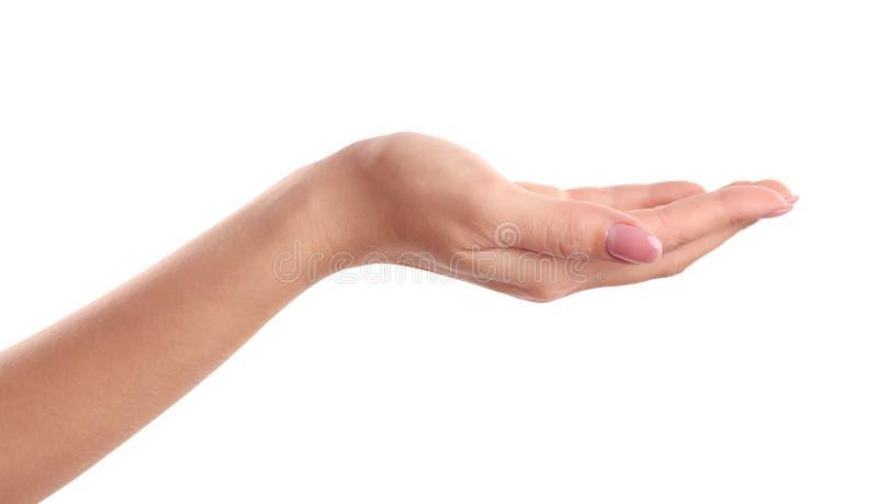 Kobiety mienia ręki palma up zdjęcia stock