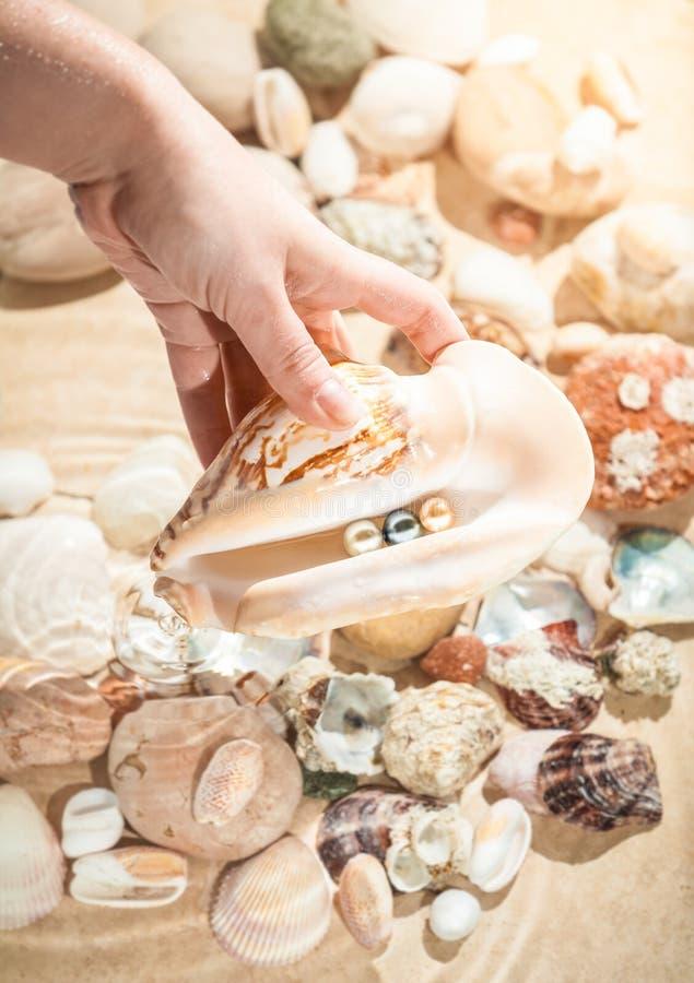 Kobiety mienia seashell z trzy perłami obraz stock
