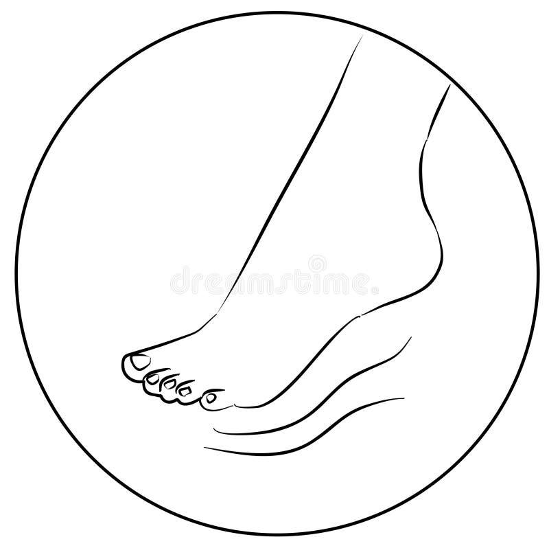 Kobiety nożna rysunkowa ikona na białym tle ilustracja wektor