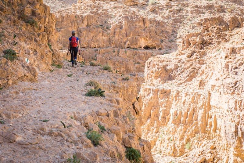 Kobiety odprowadzenia pustyni jar zdjęcie royalty free