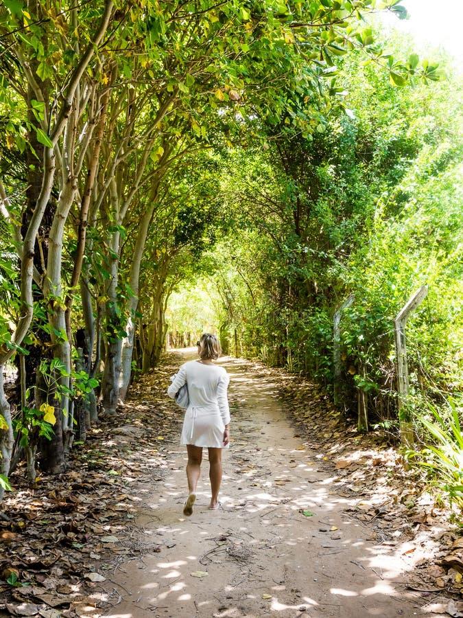 Kobiety odprowadzenie w nieociosanej drodze przemian między drzewami na słonecznym dniu obrazy stock