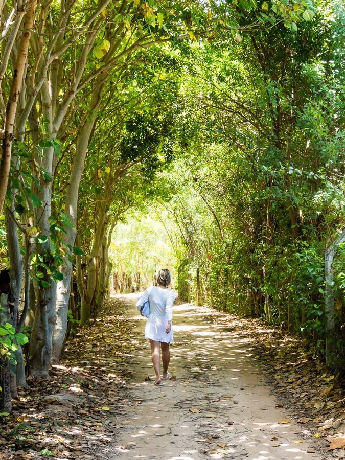 Kobiety odprowadzenie w nieociosanej drodze przemian między drzewami na słonecznym dniu fotografia stock