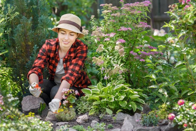 Kobiety ogrodniczka ciągnie out świrzepy obrazy stock
