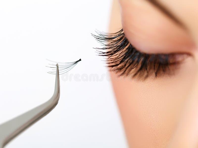 Kobiety oko z długimi rzęsami. Rzęsy rozszerzenie obrazy stock